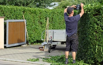 professional Chepstow hedge cutting services