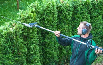 Chepstow hedge trimming costs