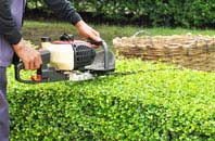 Chepstow hedge trimming services