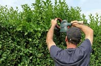 free Chepstow hedge trimming quotes